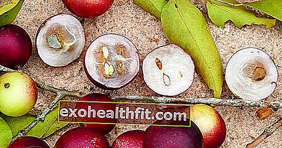 Próbálta már a camu-camu-t? Ismerje meg a világ legmagasabb C-vitamin tartalmú gyümölcsét