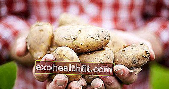 Burgonya: Melyek a legegészségesebb készítmények a napi fogyasztáshoz?