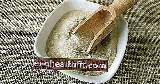 Adakah agar-agar agar-agar? Khasiat rumput laut berkhasiat ini digunakan dalam diet vegan