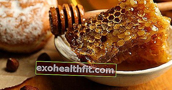 Чи може мед замінити цукор? Дізнайтеся, як підсолодити свій раціон здоровим способом!