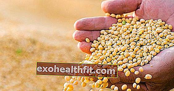 Σπόροι στα τρόφιμα: Δείτε ποιοι είναι οι πιο θρεπτικοί για την υγεία!