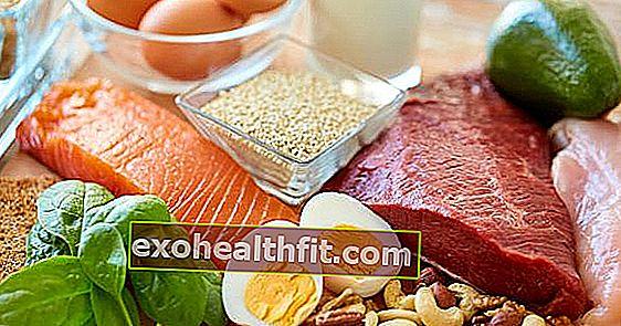 Для чого потрібні білки? Зрозумійте його значення в нашому харчуванні