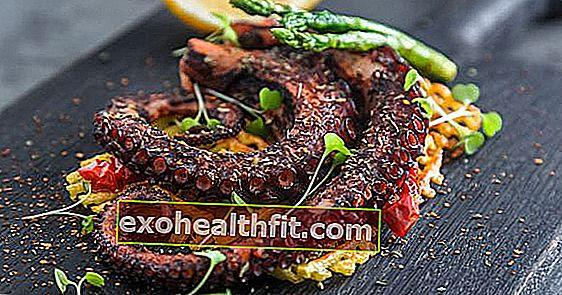 الأخطبوط والحبار: فهم الفرق وأهمية تناول هذه المأكولات البحرية