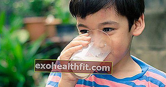Види молока: цільне, напівцільне, нульова лактоза ... Яке є найбільш підходящим?