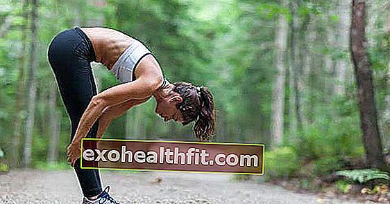 Psoas: Φροντίστε τον μυ που σας υποστηρίζει!