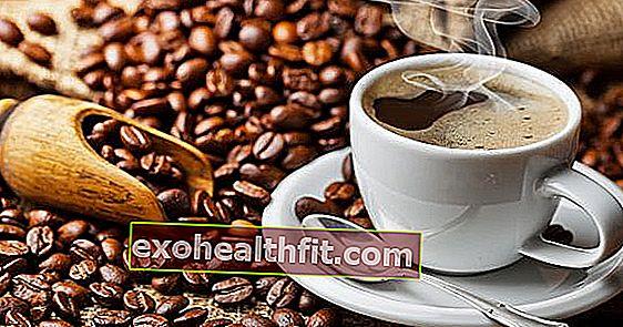 Caffè arabo o caffè robusto? Qual è il tipo più sano per la salute? Guarda