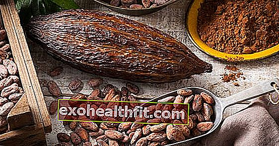 Cacao fresco: perché consumarlo al posto del cioccolato