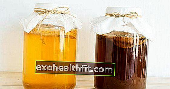 Cos'è il kombucha e come preparare questa bevanda fermentata nel tè verde, opaco o nero